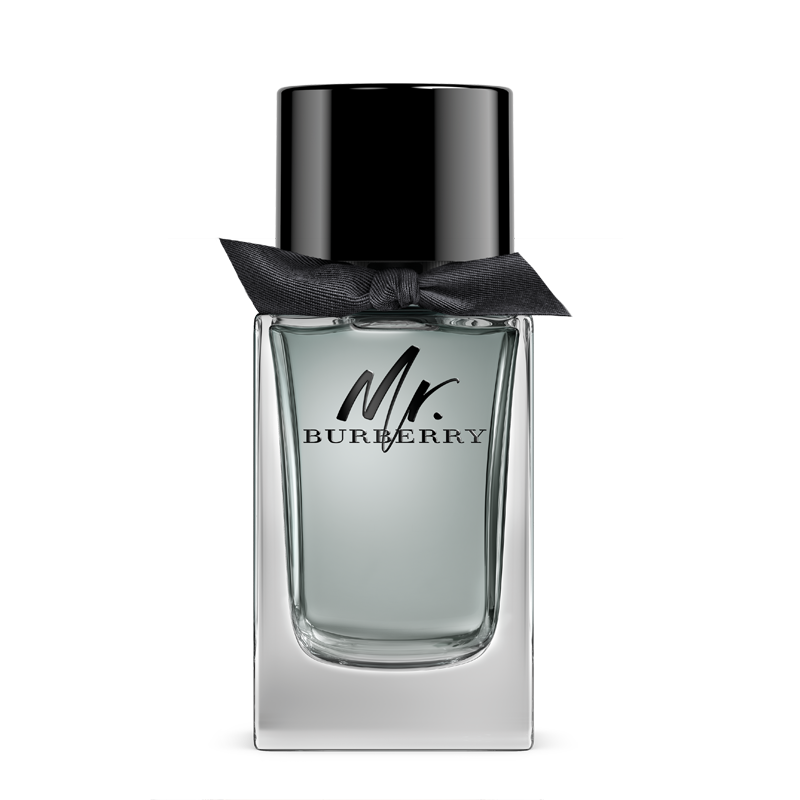 Burberry Mr Burberry Eau de Toilette 100ml  (Tester)