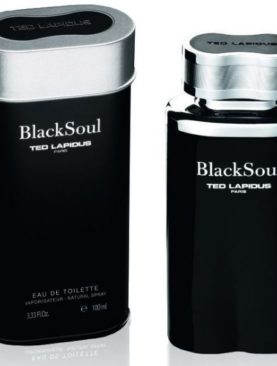 Ted Lapidus Black Soul Eau de Toilette 100ml