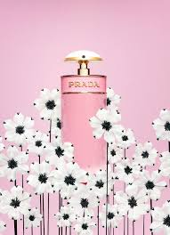 Candy Florale  2